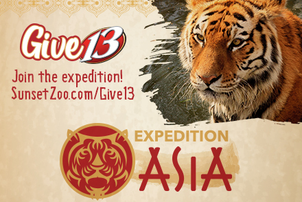 Give 13 to Expedition Asia